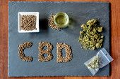 Initials Of The Active Ingredient Cbd On A Slate With Medical Marijuana Sprouts, Hemp Seeds, Essenti poster