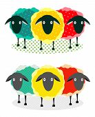 Three Sheep Illustration