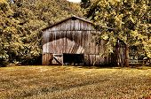 picture of tobacco barn  - Historical Tobacco Barn Natchez Trace Parkway Tennessee - JPG