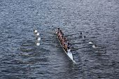 Brunswick School Boat Club races in the Head of Charles Regatta