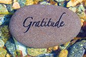 picture of give thanks  - Word Gratitude engrained on a rock in a fresh water creek - JPG