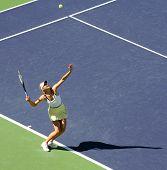 Maria Sharapova Serving The Ball