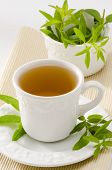pic of naturopathy  - Lemon verbena Herbal Tea in a cup - JPG