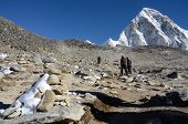 Hikers Climbing To Kala Patthar Peak (5164 M ),Nepal,Asia