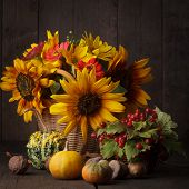 Still Life In Colours Of Autumn