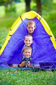 stock photo of tent  - funny kids and dog looking out from tent - JPG