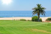 Beautiful View Of The Golf Course To The Sea And Palm Trees. Portugal, Algarve.