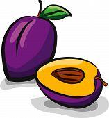 Plum fruits sketch drawing vector set