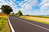 stock photo of plow  - Winding Paved Road between Autumn Plowed Fields in the Tuscany - JPG