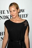 Maria Bello  at the Los Angeles Premiere of 'The Yellow Handkerchief'. WGA Theatre, Beverly Hills, CA. 11-25-08