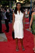 Tasha Smith  at the Los Angeles Premiere of