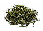 image of substitutes  - Dried Stevia rebaudiana Bertoni sweet leaf sugar substitute isolated - JPG