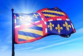 Bourgogne (France) flag waving on the wind