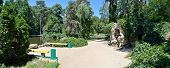 Dendropark