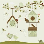 Cute Birds With Birdhouse