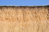 stock photo of loam  - Cut of soil with different layers - JPG