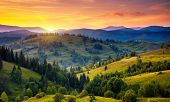 Beautiful green hills at dusk. Carpathian, Ukraine, Europe. Beauty world.
