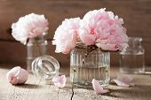 picture of vegetation  - beautiful pink peony flowers bouquet in vase - JPG