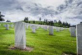 Military Graveyard