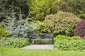 Park Bench Set In Beautiful Gardens