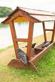 Wooden birdhouse with dove