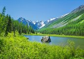 Russian Altai mountain landscape