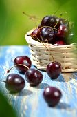 closeup of ripe, fresh and sweet cherries in wicker basket on table in the garden