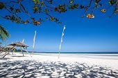 Tropical Beach In Anda, Bohol Island, Philippines