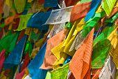 Colorful Tibetan Prayer Flags