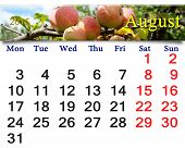 Calendar For The August Of 2015 Year With Apples