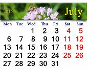 Calendar For July Of 2015 Year With Fly On The Flower
