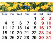 Calendar For May Of 2015 Year With Yellow Tulips