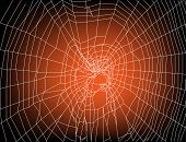 illustration with spider web on sunset background