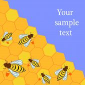 Illustration Of Bees And Honeycombs