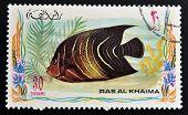 RAS AL-KHAIMAH - CIRCA 2006: A stamp printed in Ras al-Khaimah shows a fish Pomacanthus