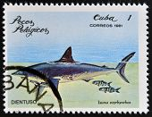 CUBA - CIRCA 1981: A Stamp printed in Cuba shows a Dorado with the inscription