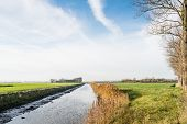 stock photo of elm  - Flat Dutch polder landscape in the autumn season with a small straight stream in the center and bare elm trees on the side - JPG