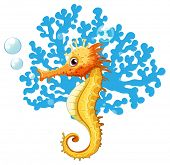A seahorse underwater on a white background