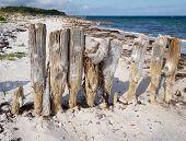 Breakwaters On The Beach Funen Denmark