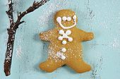 Merry Christmas Festive Baking Concept With Gingerbread Cookie Closeup On Vintage Style Recycled