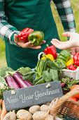 foto of farmers market vegetables  - New year goodness against fresh vegetables at farmers market - JPG
