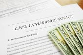 foto of insurance-policy  - Closeup of Life insurance policy and cash - JPG
