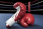 picture of boxing ring  - Pair of red boxing gloves inside ring - JPG