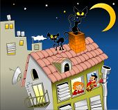 picture of moonlit  - two cats walk on a moonlit night on the roof of the house - JPG