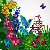 picture of tropical birds  - Floral design background - JPG