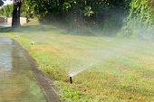 stock photo of sprinkler  - Sprinkler working on a green grass lawn - JPG