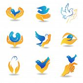picture of heartwarming  - Design elements bird in hands - JPG