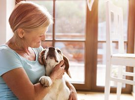 picture of dog-house  - Senior woman with her dog inside of her house - JPG