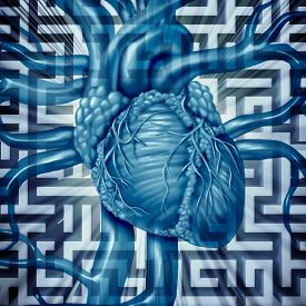 stock photo of cardiovascular  - Heart challenge human cardiovascular problems concept on a maze or labyrinth as cardiac dangers of an unhealthy organ risk for medical blood circulation resulting in a heart attack - JPG