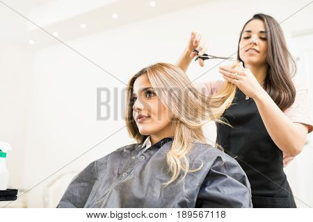 poster of Hairdresser Cutting Some Hair Tips